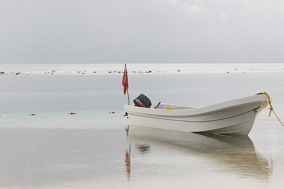 #FreeToEdit #mexico bay #fishingboats  #reflection