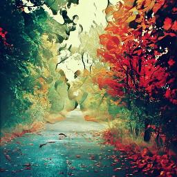 freetoedit autumn wapautumnvibes autumleaves wapautumn wapautumcontest