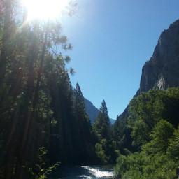 trees sunlight river bluesky nature freetoedit